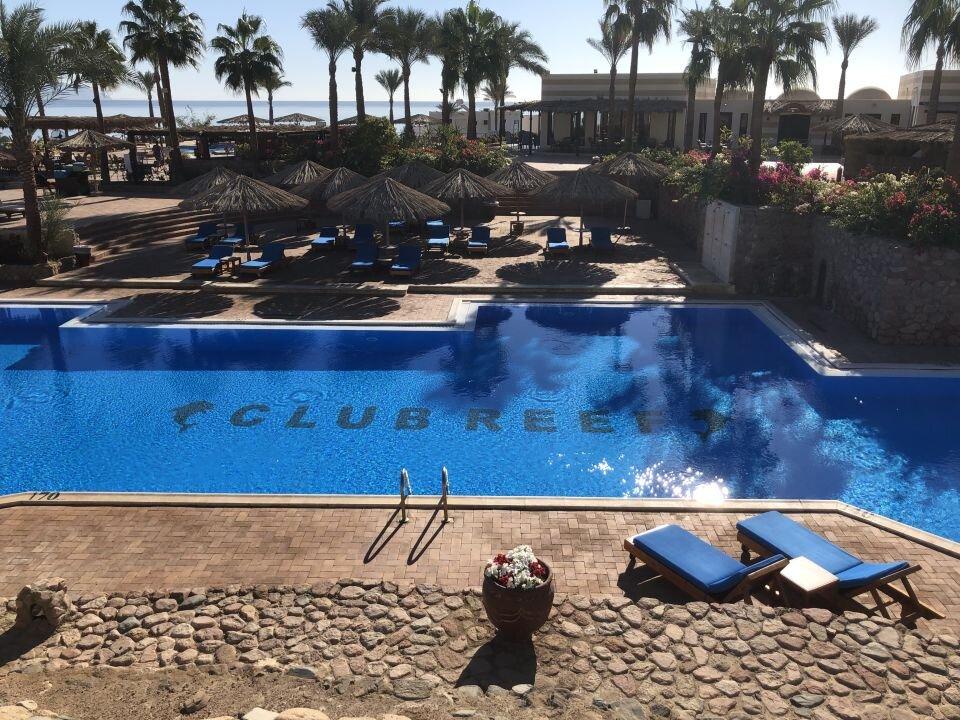 günstig ägypten urlaub 2020 pool